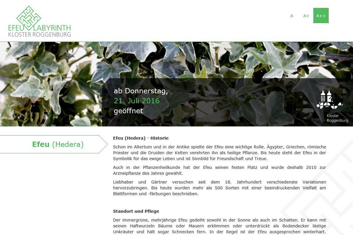 www.kloster-efeu.de